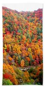 Brilliant Color Trees Beach Towel