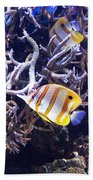 Brilliant Fish Aquarium Beach Towel