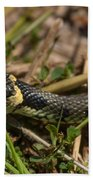 British Grass Snake Beach Towel