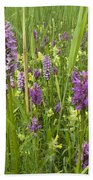 Broad-leaved Marsh Orchid Dactylorhiza Beach Towel