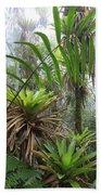 Bromeliads And Tree Ferns  Beach Towel by Cyril Ruoso