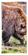 Brown Bear 201 Beach Towel