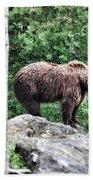 Brown Bear 208 Beach Towel
