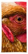 Brown Head Of A Hen On A Lawn Beach Towel
