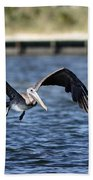Brown Pelican - Low Flyer Beach Towel