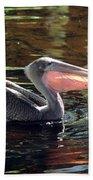 Brown Pelican Afloat Beach Towel