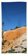 Bryce Canyon Character Beach Towel