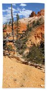 Bryce Canyon Forest Beach Towel