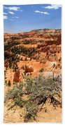 Bryce Canyon Overlook Beach Towel