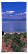 Buffalo And The Great Salt Lake Beach Towel