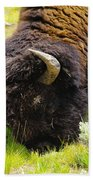 Buffalo Grazing Beach Towel