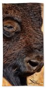 Buffalo Up Close Beach Sheet