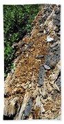 Bug Filled Bear Clawed Log Beach Towel