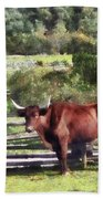 Bull In Pasture Beach Towel by Susan Savad