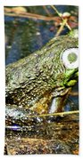 Bullfrog 1 Beach Towel