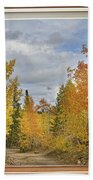Burning Autumn Aspens Back Country Colorado Window View Beach Towel