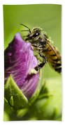 Busy Bee 2 Beach Towel