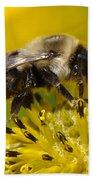 Busy Bee Beach Towel
