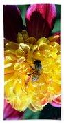 Busy Bee On Yellow Flower Beach Towel