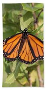 Butterfly - Monarch - Resting Beach Towel