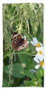 Butterfly 13 Beach Towel