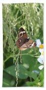Butterfly 14 Beach Towel