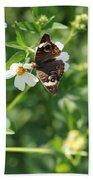 Butterfly 25 Beach Towel