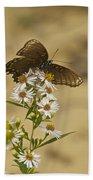 Butterfly 3321 Beach Towel