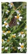 Butterfly 35 Beach Towel