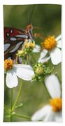 Butterfly 41 Beach Towel