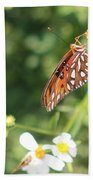 Butterfly 47 Beach Towel