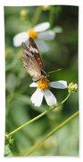 Butterfly 7 Beach Towel