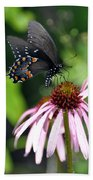 Butterfly And Coine Flower Beach Towel