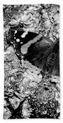 Butterfly Bark Black And White Beach Towel