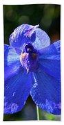 Butterfly Blue Beach Towel