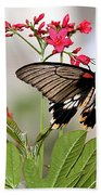 Butterfly Candy Beach Towel