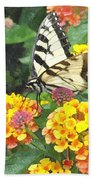 Butterfly Dining Bdwc Beach Towel