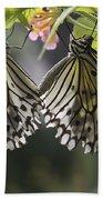 Butterfly Duo Beach Towel