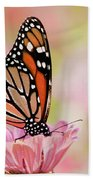 Butterfly Garden IIi Beach Towel