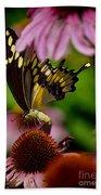 Butterfly Heaven Beach Towel