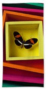 Butterfly In Box Beach Towel