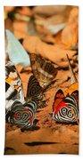 Butterfly Menagerie Beach Towel