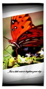 Butterfly Note Card Beach Towel