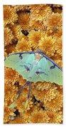 Butterfly On Flowers Beach Sheet