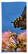 Butterfly On Mimosa Blossom Beach Towel