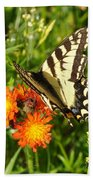 Butterfly On Orange Flowers Beach Towel