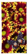 Butterfly On Yellow Red Daises  Beach Towel