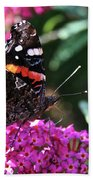 Butterfly Plant At Work Beach Towel