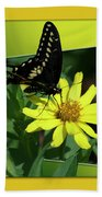 Butterfly Swallowtail 01 16 By 20 Beach Towel