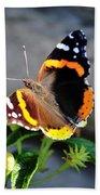 Butterfly Tai Chi On Lantana Luscious Lemonade Beach Towel